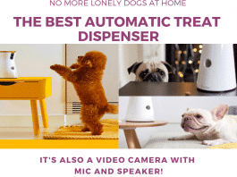 furbo The best AUTOMATIC TREAT DISPENSER