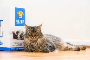 Ultra Premium Clumping Cat Litter