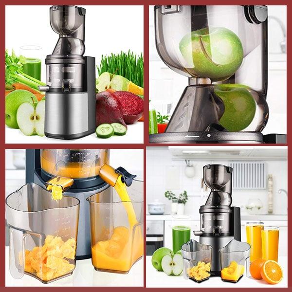 Flexzion Masticating Juicer Machine