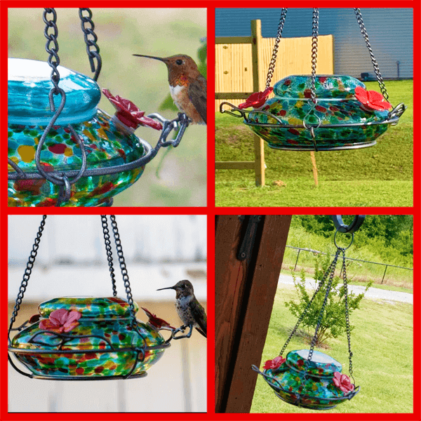 Wild Wings WWGHF1 Top Fill Hummingbird Feeder