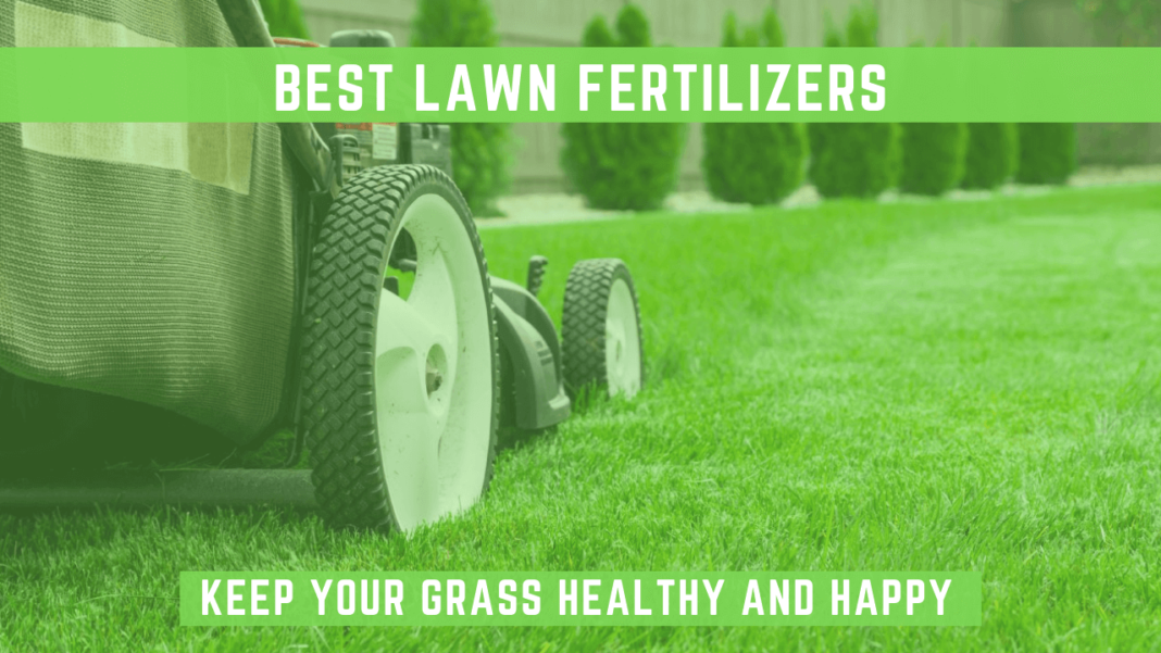 best lawn fertilizers featured