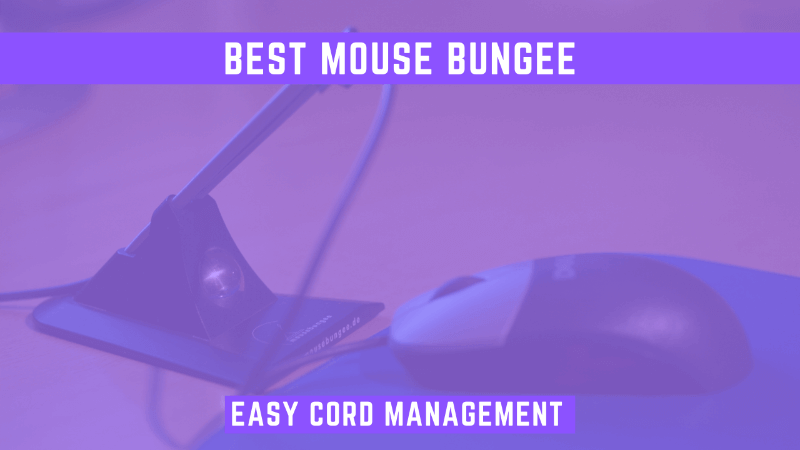 best mouse bungee featured