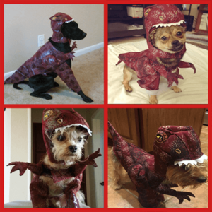 dog dinosaur costume